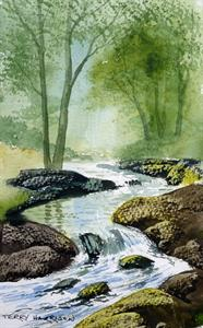 Buy Woodland Stream 7 x 11 inches watercolour Online