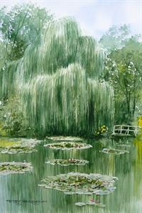 Buy Willow and Lilly Pads 10 x 17 inches watercolour Online