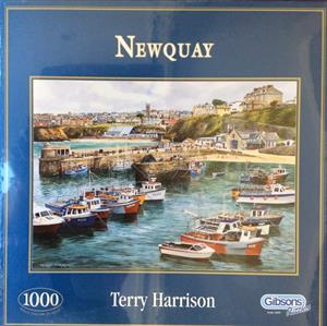 More information on NEWQUAY 1000 PIECE JIGSAW PUZZLE