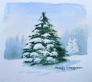 Buy Snow on Fir Tree study 8 x 8 inches Watercolour on Paper Online