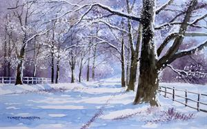 Buy Snowy Avenue  11.5 x 19 inches Watercolour on Paper Online